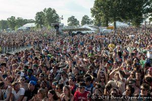 Bonnaroo Music Festival Crowd