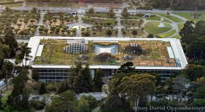 California Academy of Sciences Living Roof in San Francisco