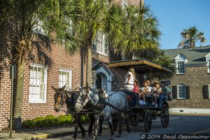 Horse Carriage Tour in Charletson, South Carolina