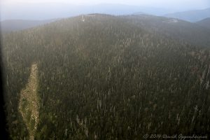 Clingmans Dome Observation Tower in the Great Smoky Mountains