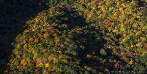 Autumn Colors at Craggy Gardens along the Blue Ridge Parkway