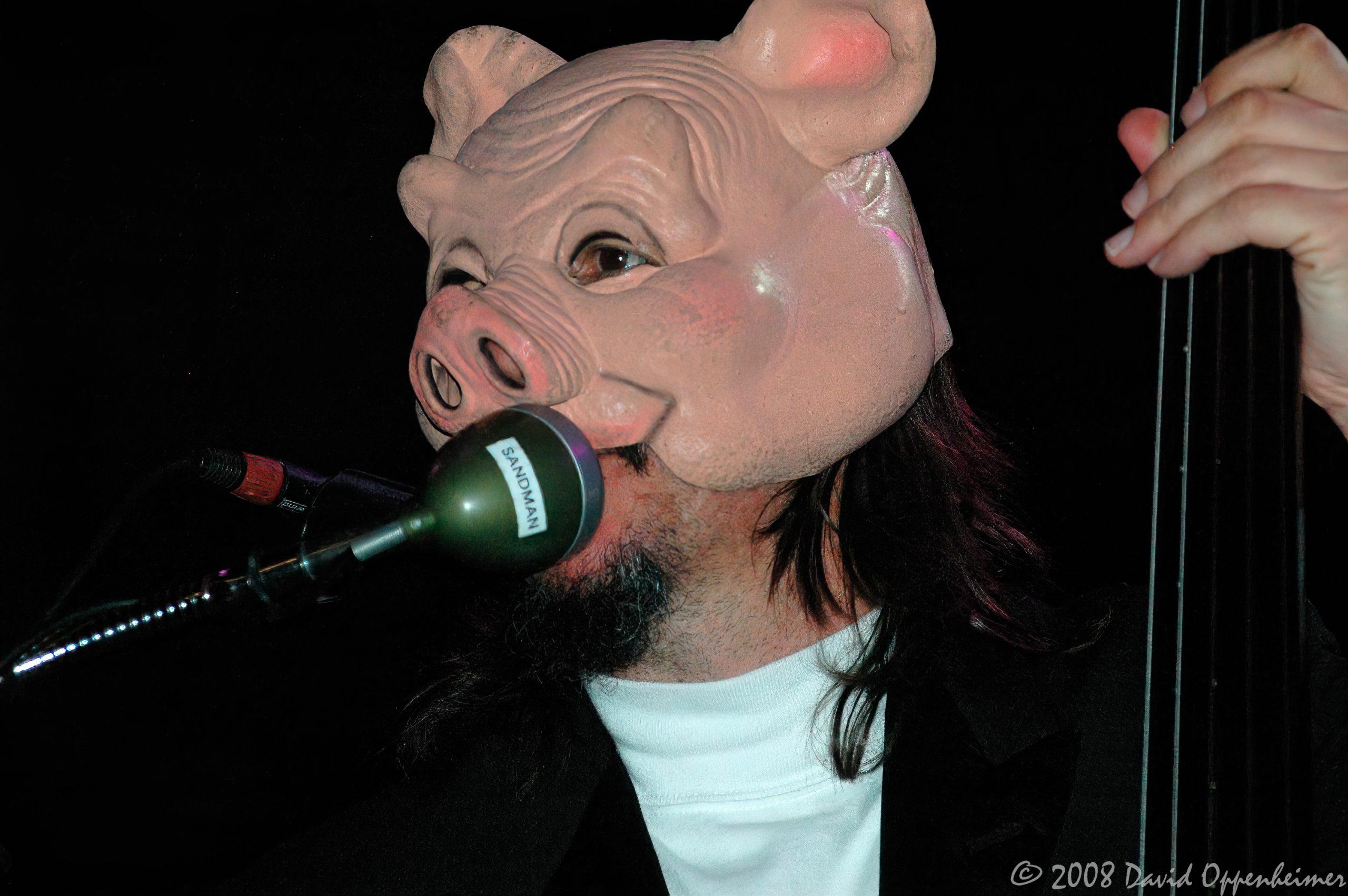 Les Claypool at Langerado Music Festival 2008