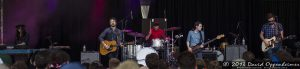 Sea Wolf at Bonnaroo Music Festival