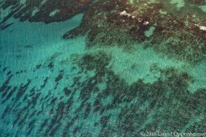 Turquoise Caribbean Ocean Water in Jamaica Aerial Photo